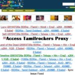 Access Tamilrockers proxy sites and how unblock it using VPN